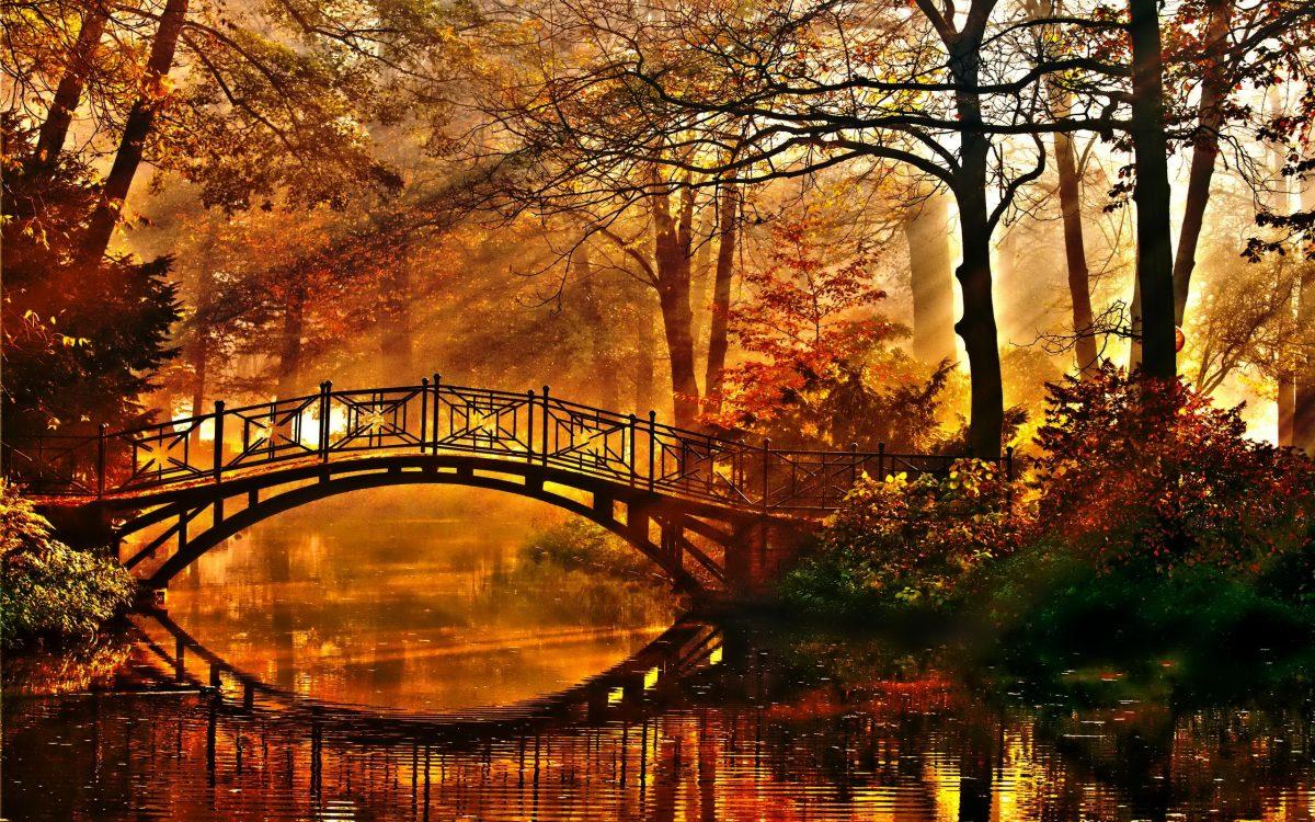 autumn-56-1200x750.jpg