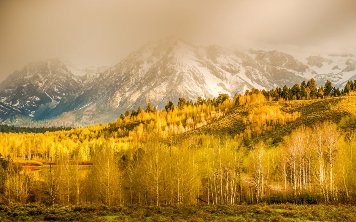 wyoming_autumn_mountains-1200x750.jpg