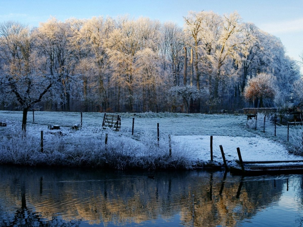 morning_lake_frost_freeze_november_fall_fence_48140_1600x1200-1200x900.jpg